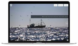 A fishing boat in the sea, the homepage of the microsite created for the WWF by Tekja on the Celtic Seas.