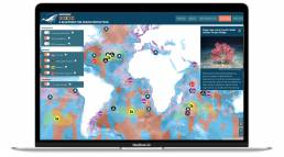 Homepage of the 30x30 - A blueprint for ocean protection map dashboard made by Tekja for Greenpeace